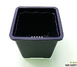 *도매-1BOX(200개)2호플분10cm플라스틱花盆사각포트_