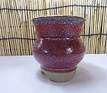 花盆스토리(手工花盆)1048_Handmade 'Flower pot'