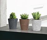 아트스톤,인테리어花盆,欧洲进口,13cm그로우클레어_