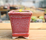 手工花盆1699_Handmade 'Flower pot'