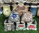 국산手工花盆-5_Handmade 'Flower pot'