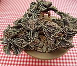 四海波自然群生老庄_Faucaria tigrina