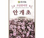 생활백화점화훼허브种子안개초粉色_