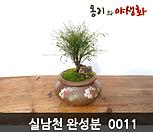 실남천手工花盆완성작0011_Handmade 'Flower pot'