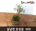 실남천手工花盆완성작009_Handmade 'Flower pot'