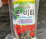팝콘베고니아 특대품분홍