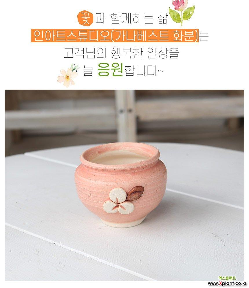 미니 -  꽃길미니단지(핑크) - 최고급 콩분 잎꽂이 수제 화분 엄지분 예쁜 다육화분 베란다 개업 특이한 선물 미니 - YMini-원형 인아트스튜디오
