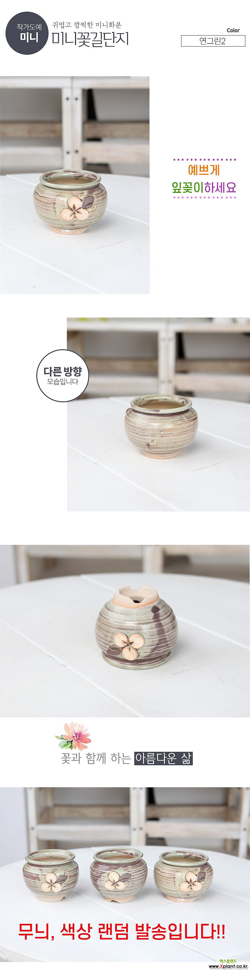 미니 -  꽃길 미니단지(연그린2) - 최고급 콩분 잎꽂이 수제 화분 엄지분 예쁜 다육화분 베란다 개업 특이한 선물 미니 - YMini-원형 인아트스튜디오