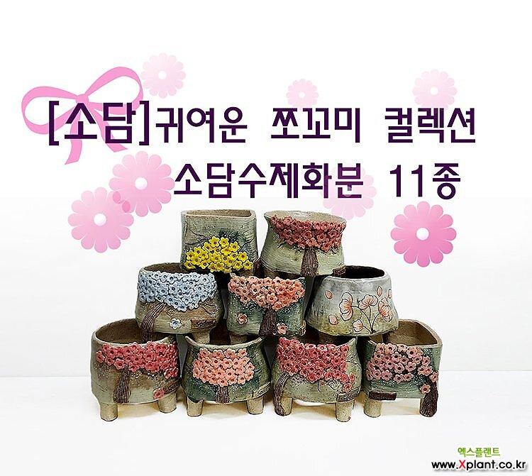 소담수제화분 쪼꼬미 컬렉션 11종