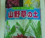 산야초(1등급)10리터-세계최고의 품질-산야초 중 가장좋은 품질