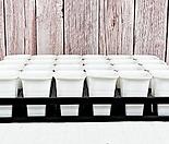 24구 롱사각 플라스틱 화분 연결 트레이 모종 파종 잎꽂이 화분 세트