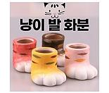 냥발팟 고양이발 화분 미니 소형 작은 도자기 인테리어 미니멀