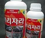 뿌리자라-고순도발근제-세계최강발근력-특허제품-조달청납품