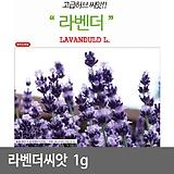 라벤더 1g (1000립)