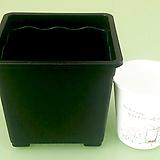 사각 플분 3호 플분12cm (10+1) 플라스틱화분 사각포트 파종분
