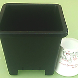 사각 플분 4호 플분15cm (10+1) 플라스틱화분 사각포트 파종분