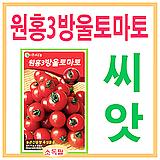 생활백화점 씨앗 채소씨앗 원홍3호방울토마토씨앗