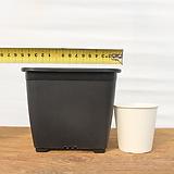 15cm 물결 플라스틱화분 6호(10+1/사각플분 파종분 플분)