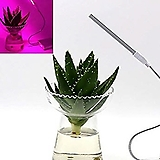 USB LED세트♥식물생장등 4.7W♥다육식물&수생식물♥다육 다육이등|