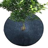 식물보호커버 5개 세트,보온덮개,잡초방지,냉해방지,수분증발방지|