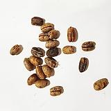카나리아야자나무씨앗100g(100립)|