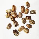 대추야자나무씨앗100g(70립)|