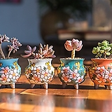 덤블수제꽃분 다이카페|