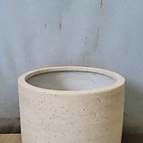 cement pot 라운드 아이보리 |Echeveria J.C.Van Keppel
