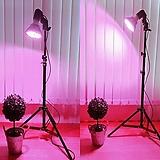 다용도 삼각대 스탠드+소켓 일체형,다육이 필수 LED 스탠드,소켓,다육 스텐드|