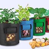 감자 고구마 재배화분,감자 고구마 집에서 수확해 보세요,포테이토 플랜터|