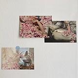 장미 로즈 명화 엽서 세트|