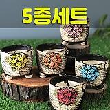 국산수제화분 도향138(5종세트) 