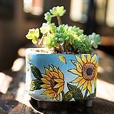 릴리스수제꽃분 다이카페 수제화분 인테리어화분 |