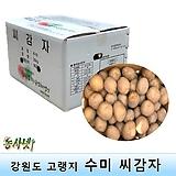 씨감자(정품) 수미 4kg 보급형(요리용,반찬용)|