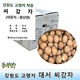 씨감자(정품) 대서 4kg 보급형 (찐감자용,간식용)|