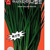 (부추종자씨앗) 차이나벨트(20g,450g) 