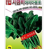 (시금치종자씨앗) 아시아동초 시금치(400g) 월동시금치 variegated