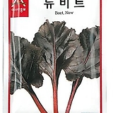 (비트종자씨앗) 뉴비트(250g) 