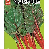 (근대씨앗종자) 적근대(300g) 