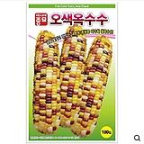 (아시아종묘/옥수수종자씨앗) 오색옥수수(100립,2000립) 