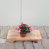 철쭉 핑크스타(소품)|