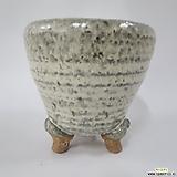 다육이 수제화분 직경10cm (G2-아이보리)|Echeveria J.C.Van Keppel