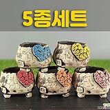 국산수제화분 도향198(5종세트)|
