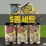 국산수제화분 도향210(5종세트)|