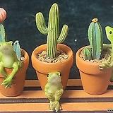가든데코(개구리 토분 3종 세트) 