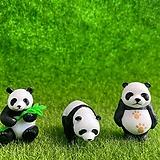 팬더 개당 (화분데코) 