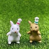 요리사 토끼 (화분데코) 