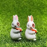 당근 얼룩 토끼  