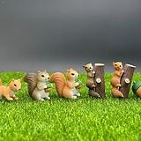 다람쥐 세트 (화분데코) 