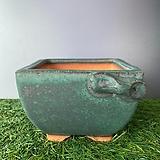 국산수제-토어분(랜덤발송)